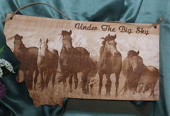 Wild Horses in Montana