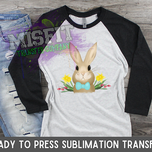 Easter Bunny - Sublimation Transfer