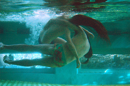 Dolphin improvisation