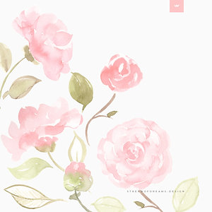 Pink Camellia Flowers | Watercolor Clip Art Image Collection