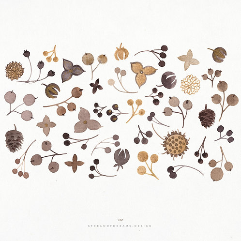 Twigs and Berries | Watercolor Clip Art