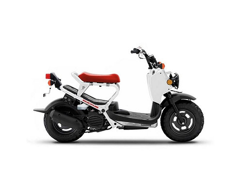 2017 Honda Ruckus Test Item