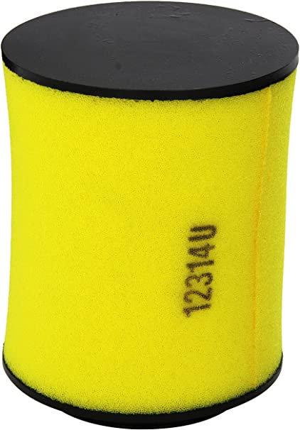 Air Filter - 17254-HP5-600