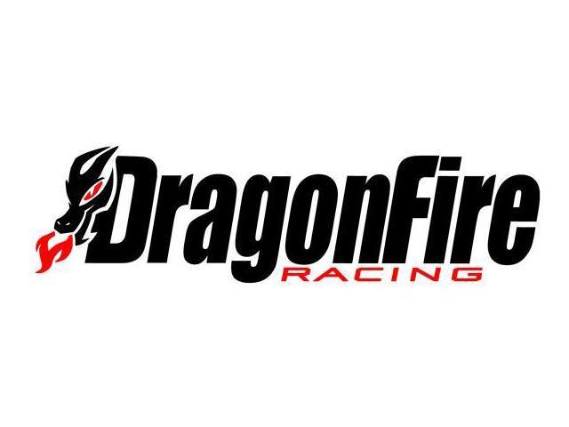 DRAGON FIRE RACING LOG.jpg