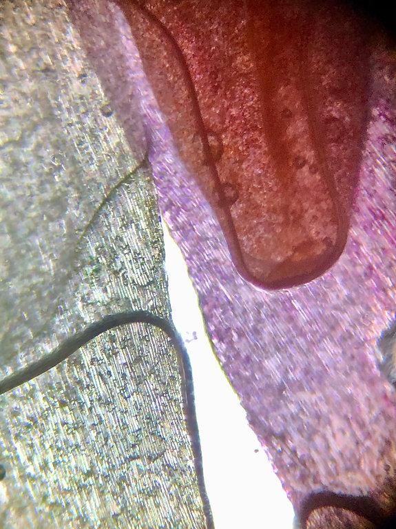 Microscopic Modern Art