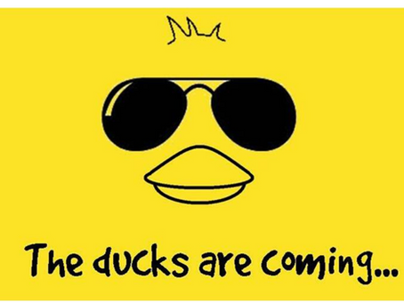 2nd Annual Duck Derby Sept 19th