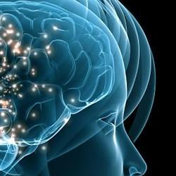 A-Virtual-Neural-Network