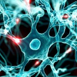big-data-neural-networks
