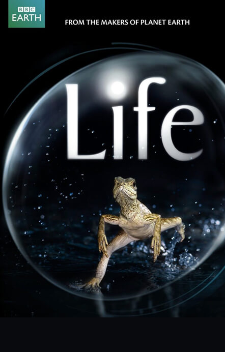 Life BBC Earth