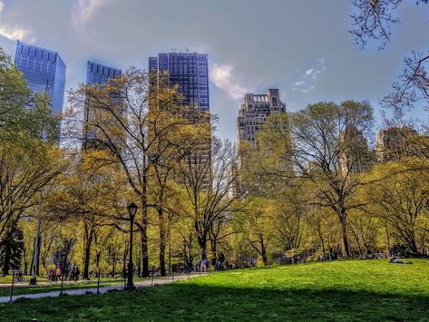 New York City é exactamente o que se ouve nas músicas e se vê nos filmes! Parte 1