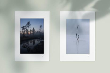 Xochimilco V / Lago & Neblina I