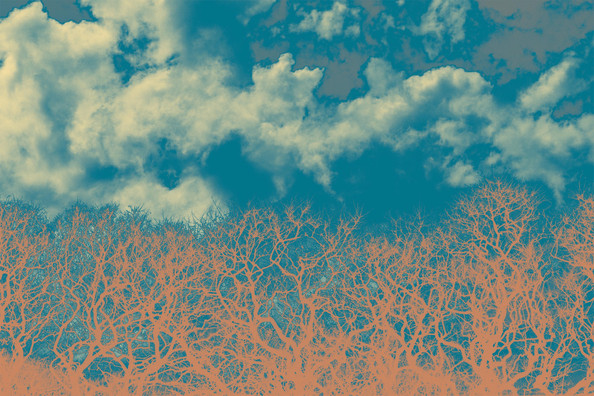 Naranja y Azul II