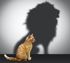 Cat%20with%20lion%20shadow_edited.jpg
