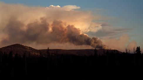 Cameron Peak Fire5.jpg