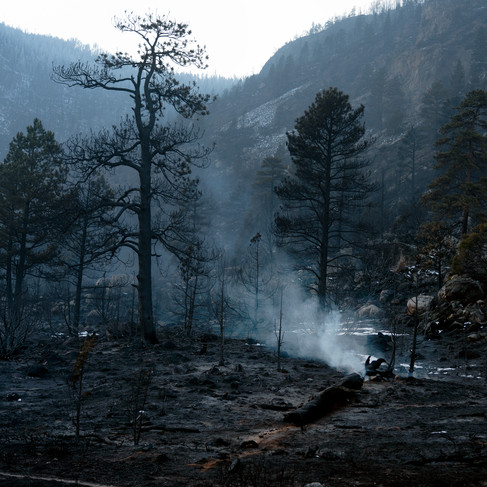 Cameron Peak Fire13.jpg