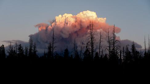 Cameron Peak Fire6.jpg