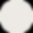 ShakeStuffUp LogoWeb-120.png