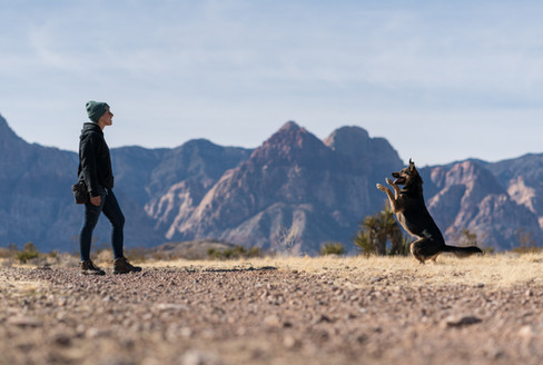 Desert Dawg-14.jpg