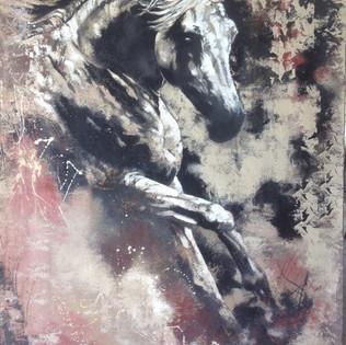Bâche Graff Stallion