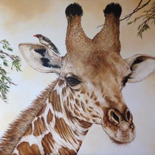 Toile Girafe Pic boeuf