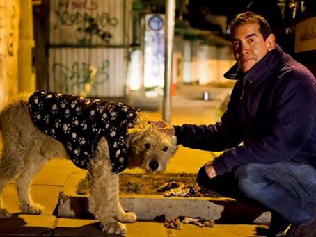 Este hombre abandonó su exitosa carrera para dedicar su vida al cuidado de perritos callejeros.