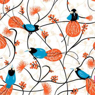 blue Birds of paradise