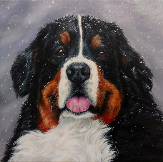 "Head Shots Starting at 8x8"" Custom Expressive Pet Portrait"