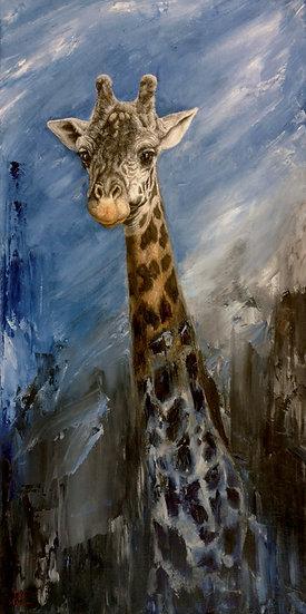 Giraffe, silent evansce