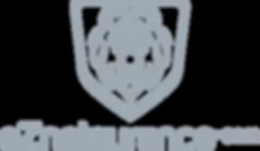EZNETSURANCE LOGO 1.31.19.png