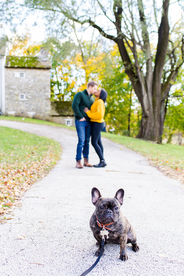 valley forge fall engagement photos pennsylvania andrea krout photography