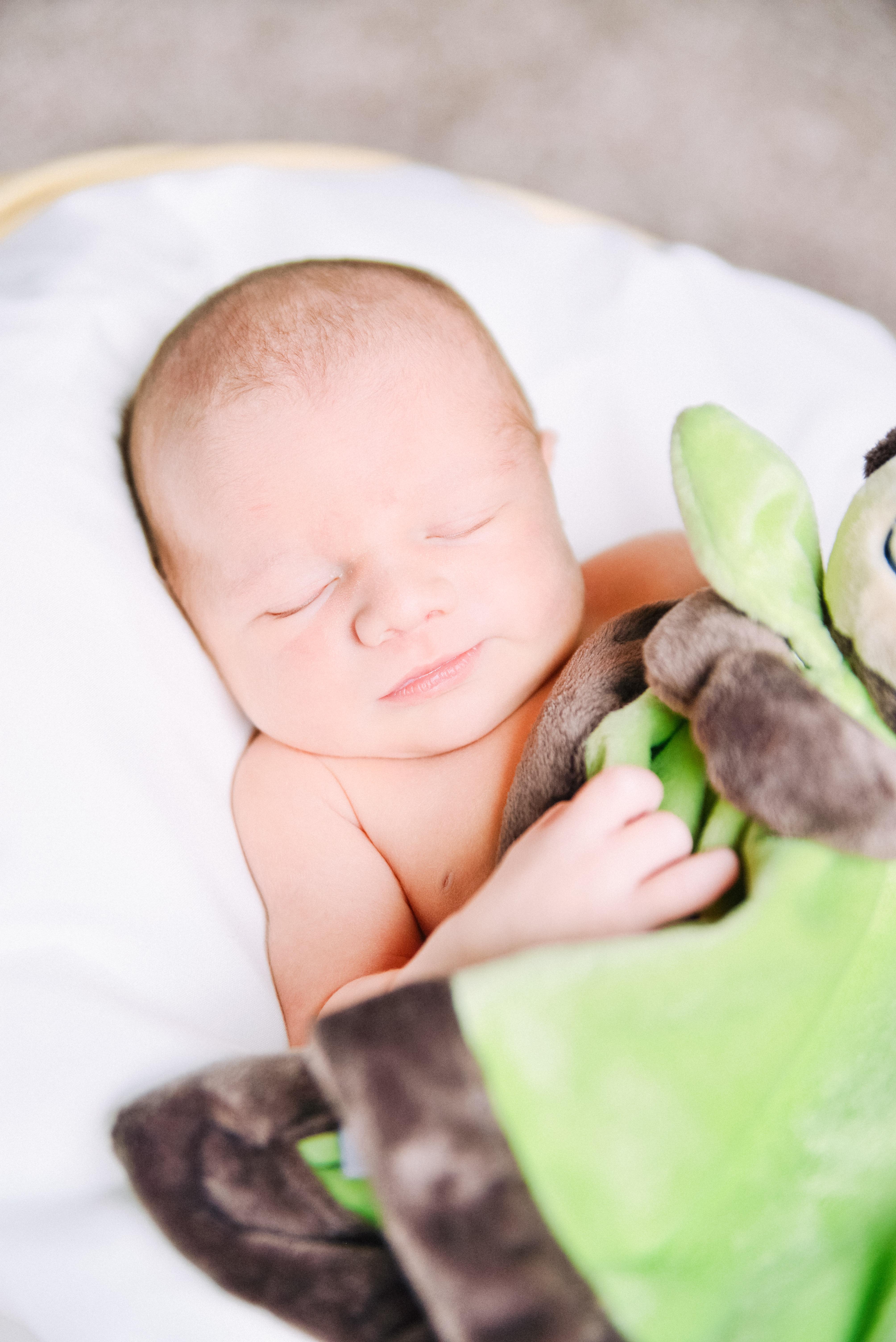 Cameron Newborn Photoshoot-71