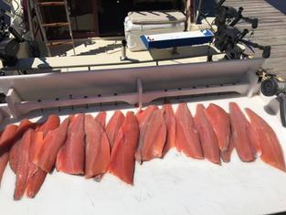fish-fillet.jpg