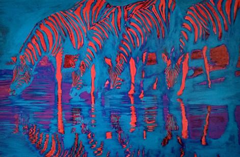 RBD Zebras