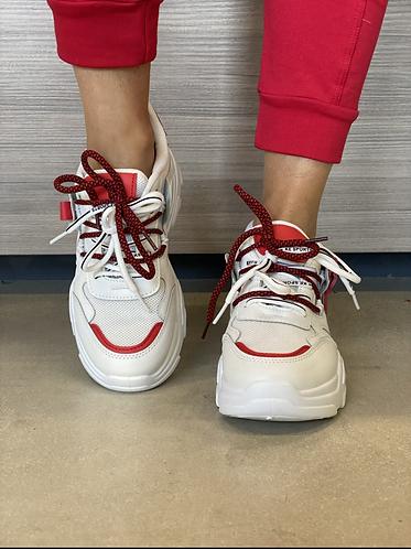 Shoes ferrari