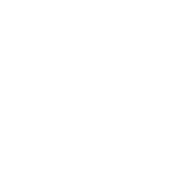 lg icon.png