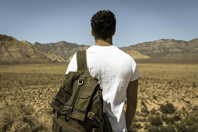 A the back of a man's head and shoulders as he looks into the desert.