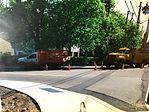 Maple Avenue.jpg