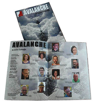OSMOSE avalanche programme.jpg