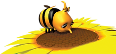 Fara_bee_on_flower_edited.png