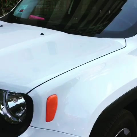 Jeep Renegade - Japan Protection