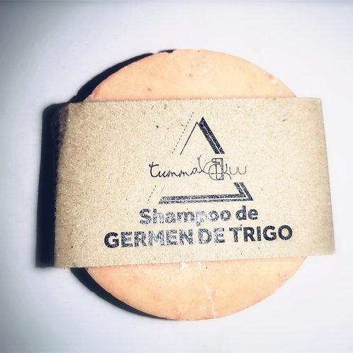 Shampoo Sólido de Germen de Trigo