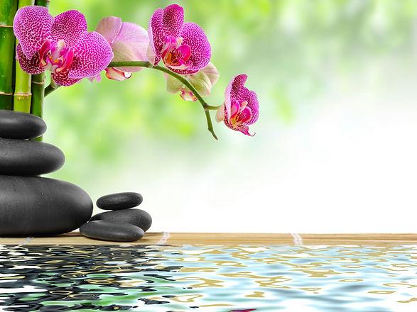 zen basalt stones and bamboo with dew_edited.jpg