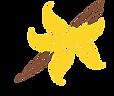 vanilla-vector-6386962.png
