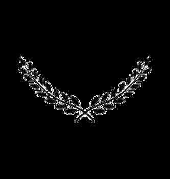laurel-wreath-award-branch-victory-icon-
