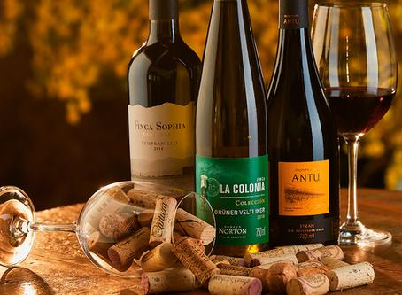 Os incríveis vinhos da América do Sul