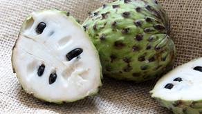 Atemoia: saiba mais sobre essa fruta saborosa e nutritiva