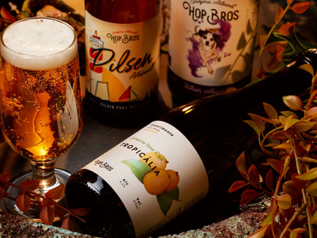 Cerveja gelada e amizade: uma combinação perfeita