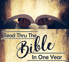 250x225 Read Bible One Year.jpg