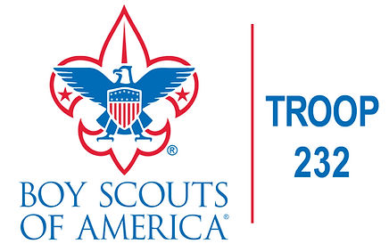 BOY SCOUTS TROOP 232.jpg