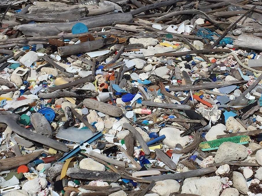 plastic plastic beach.jpg